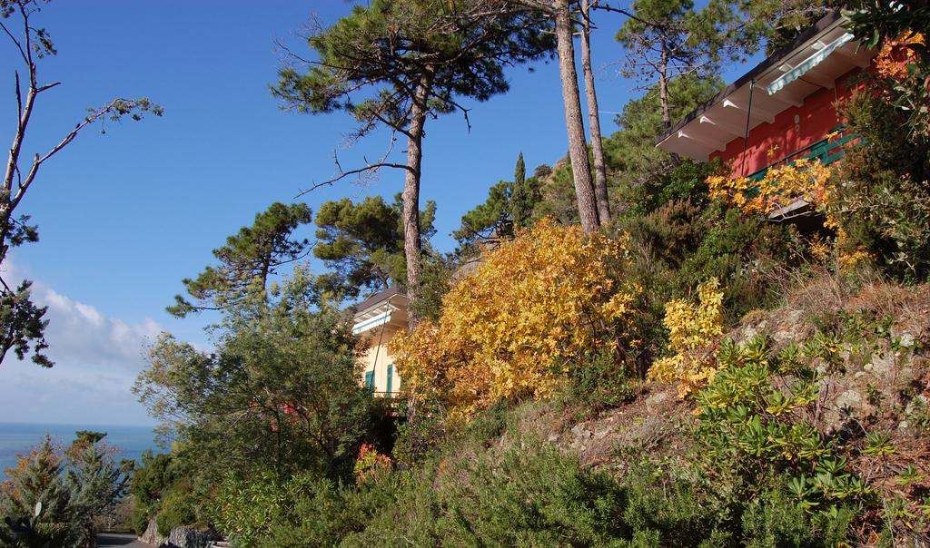 La tua casa al mare - Casa Vacanze in Liguria