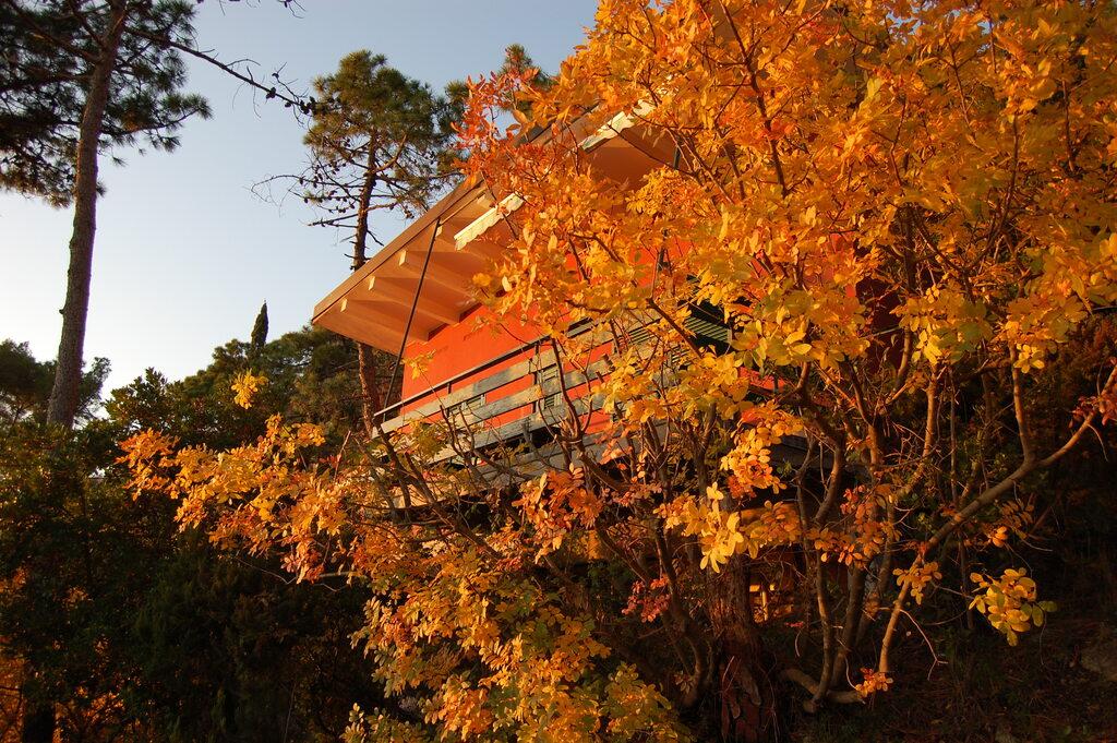 """""""Foliage"""" alla Francesca - Offerta Ottobre in Liguria"""